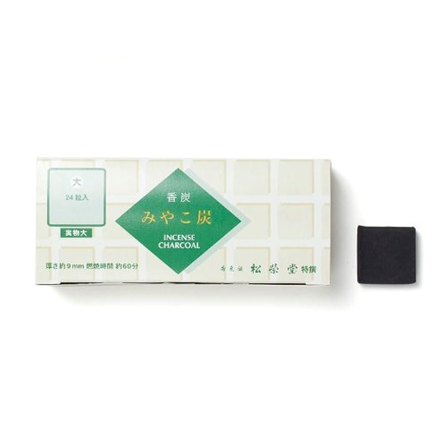 野な配置必要ない松栄堂の香炭 みやこ炭 B大24粒 緑箱 #750112
