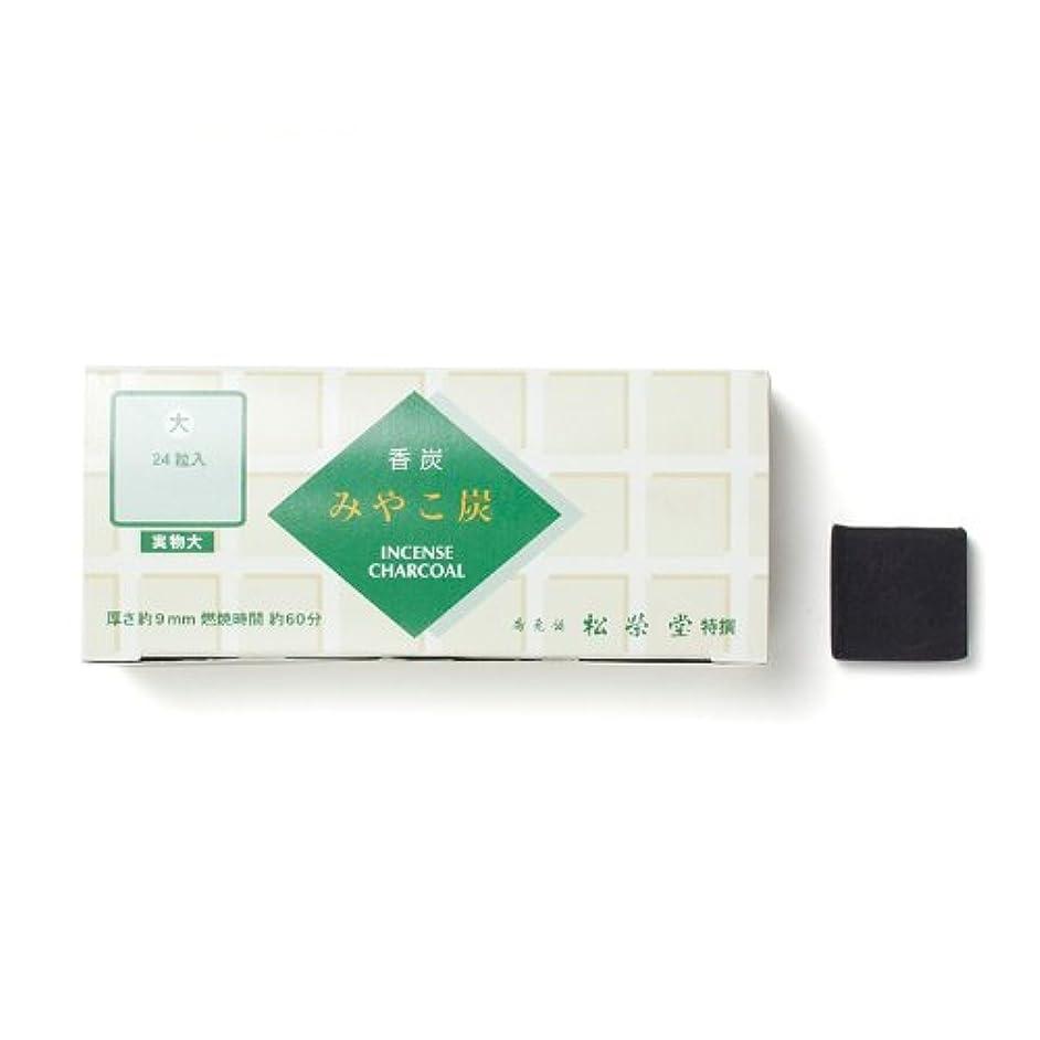 小切手吐くいっぱい松栄堂の香炭 みやこ炭 B大24粒 緑箱 #750112