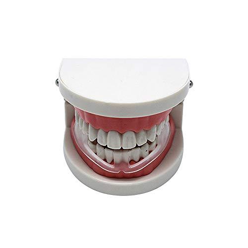FEDBNET Sport Mundschutz Klar Mundschutz Transparente Boxen Silikon Zahnschutz Zähne Bruxismus Schleifen beseitigt Anziehen Produkt