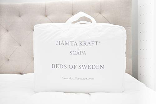HÄMTA KRAFT BY SCAPA- Pack 2 Rellenos 65x65 Almohada SKAFTÖ 100% Plumón