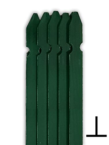 10PZ Palo a T altezza 200 CM per recinzione PLASTIFICATO, paletto per recinzione in ferro sezione T mm 30x30x3 Verde