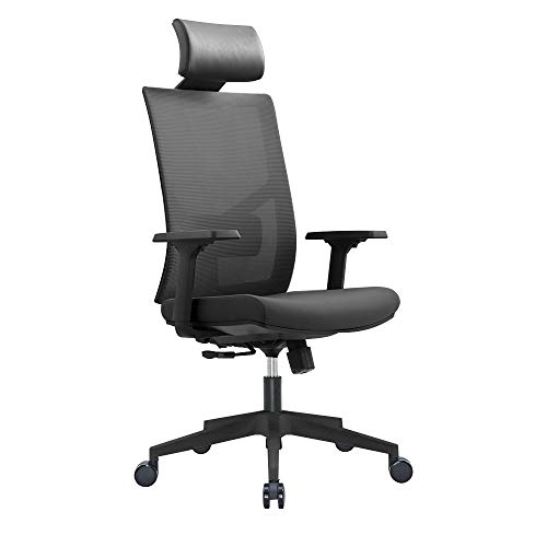 Ergonomic Multi Function Mesh Office Chair with Lumbar Support, Adjustable Armrest (Headrest, Black)