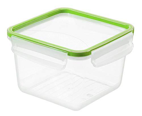 Rotho Clic & Lock quadratische Frischhaltedose 1,4l mit Deckel und Dichtung, Kunststoff (PP) BPA-frei, transparent/grün, 1,4l (16,1 x 16,1 x 10,3 cm)