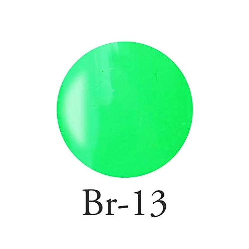 寄り添う教師の日耕すエンジェル クィーンカラージェル レオノールグリーン Br-13 3g