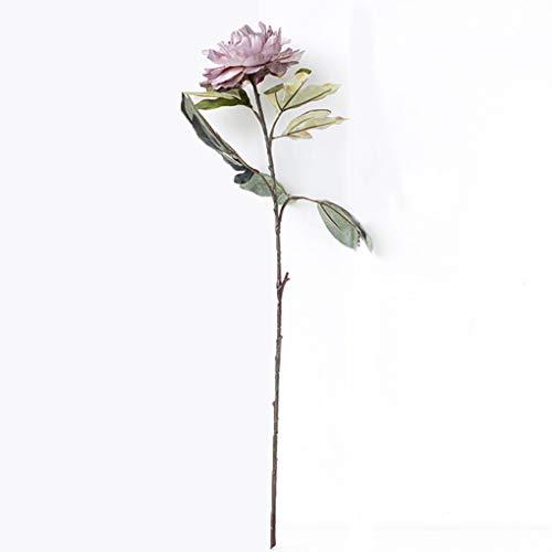 Sarazong Européen Rétro Simulation Faux Fleur Bourgeon Fleur Haute Qualité Pivoine Fleur Artificielle Fleur, Éternel Fleur Décoration De Sol Arrangement de Fleurs Faux Fleurs,B