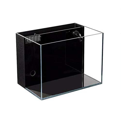 Lifegard Aquatics Ultra Low Iron Glass Crystal Aquarium with Built-in Back Filter, 4.14 Gallons