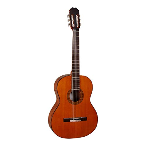 Santana-DG100-HG-4/4 - Klassieke gitaar