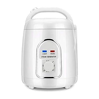 ETE ETMATE Sauna Steamer Portable Pot 1.5-1.8 Liters Suit Home SPA Shower 110V Evaporator Fumigation Machine (US Plug)