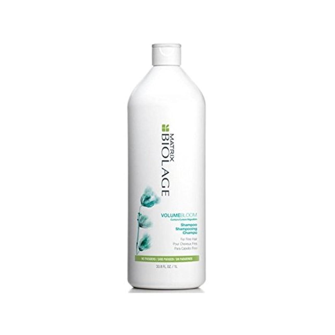 雹まばたきキャラバンポンプを有するマトリックスシャンプー(千ミリリットル) x2 - Matrix Volumebloom Shampoo (1000ml) With Pump (Pack of 2) [並行輸入品]
