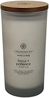 Chesapeake Bay Candle Scented Candle, Focus + Patience (Tobacco Cedar), Large