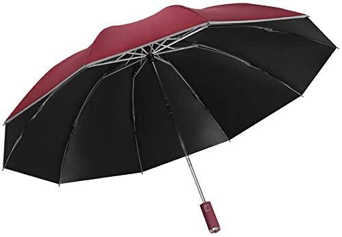 Earthily Regenschirm Durchsichtig 2E Vollautomatischer Regenschirm,Sturmfest Groß Schirm,Klappbarer Business Regenschirm Mit Reflexstreifen,Tragbar Wasser Winddicht Umbrella Fur Damen Herren,Leicht,Ko