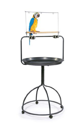 Prevue Hendryx 3183 Parrot Playstand, Round,Black