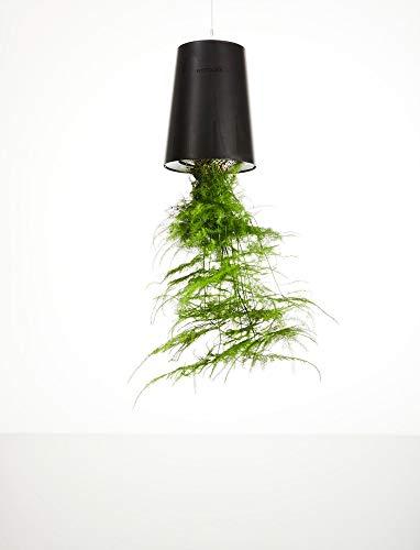 Boskke Sky Planter - Set di 3 piatti riciclati, colore: Nero
