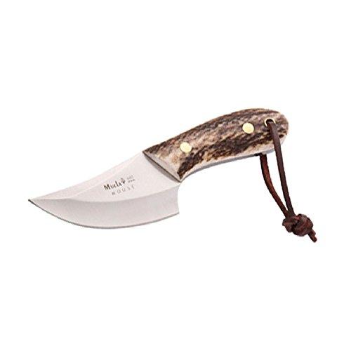 Electropolis Cuchillo de Caza Muela Mouse MOUSE-7A, desollador Enterizo, cachas de asta de Ciervo, Peso 140 Gramos + Tarjeta Multiusos de Regalo