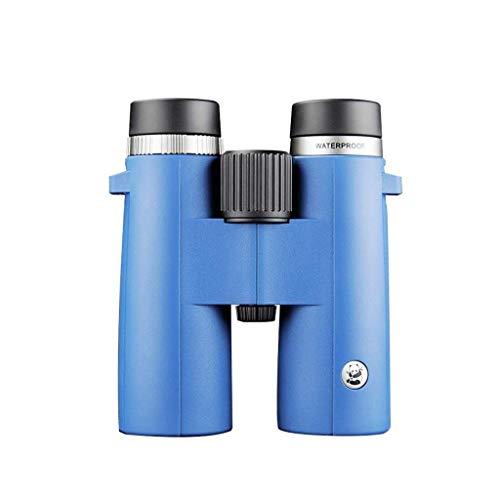 SYWJ Telescopio Digital HD 10 Veces;42 Gafas de Mano, cámara HD de Alto Rendimiento para conciertos, Llena de nitrógeno e Impermeable, con cordón/Bolsa Suave/Tela de Espejo (Color: Pw10 & ti