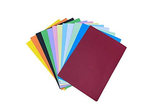 60 hojas de papel de color DIN A4, hojas de colores de 230 g/m², papel de colores, A4, papel de dibujo colorido, juego de 12 colores, para manualidades y manualidades (20 x 30 cm)