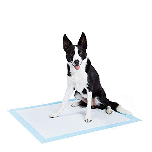 Amazonbasics Pet Training and Puppy Pad Extra Large 60 Count