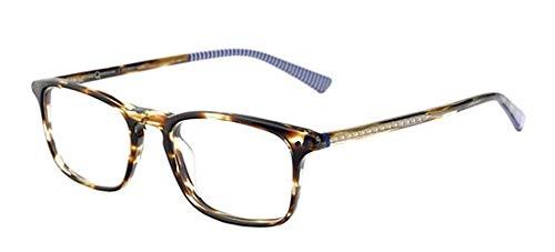 Etnia Barcelona FITZROY STRIPED BROWN 48/19/140 unisex Eyewear Frame