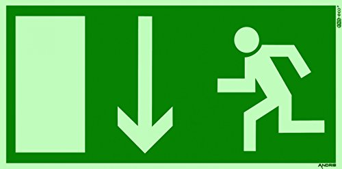 Orig. ANDRIS® Marken-Piktogramm/Symbolschild Fluchtweg/Notausgang/Rettungsweg Symbol nach unten DIN Kunststoffschild lang nachleuchtend 300x150mm