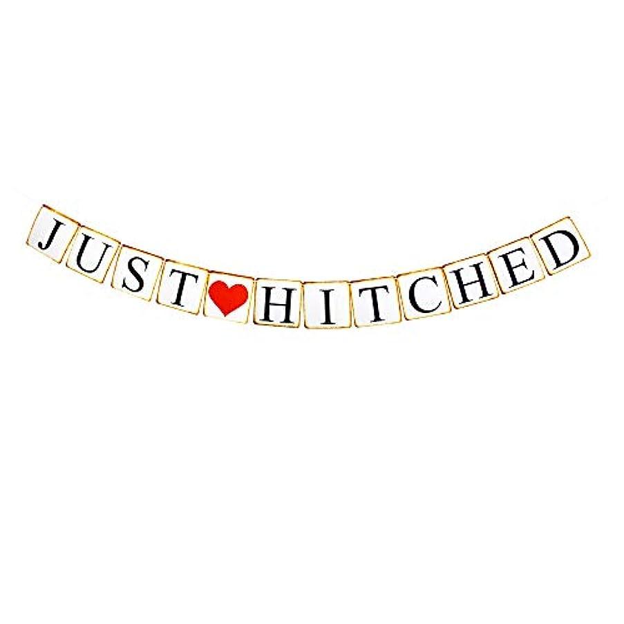 Just Hitched Banner, Bacherolette/Engagement/Bridal Shower Party Sign Paper Garland