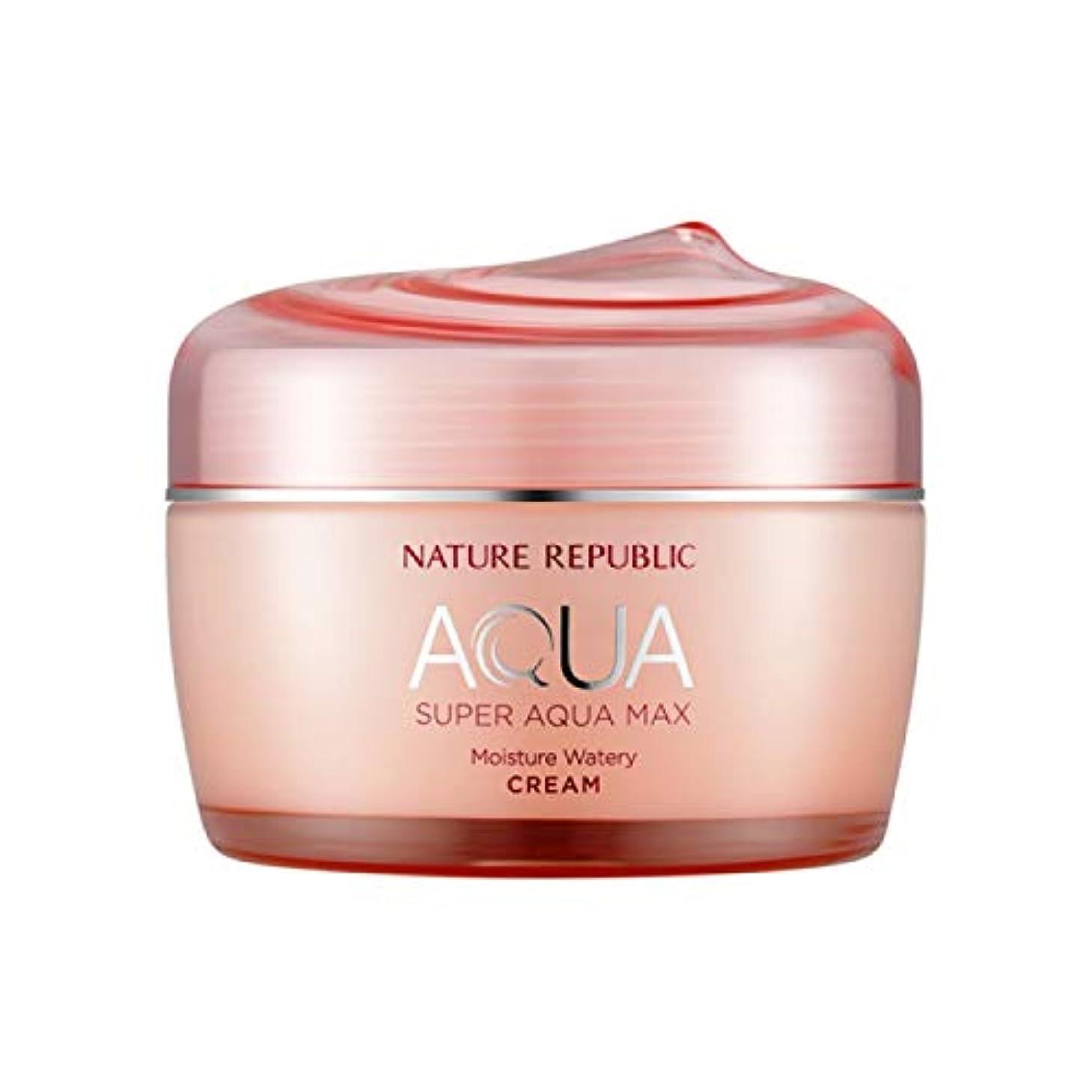 哲学ハイブリッド釈義ネイチャーリパブリック(Nature Republic)スーパーアクアマックスモイスチャー水分クリーム[乾性用] 80ml / Super Aqua-Max Moisture Moisture Cream (Dry Skin) 80ml :: 韓国コスメ [並行輸入品]