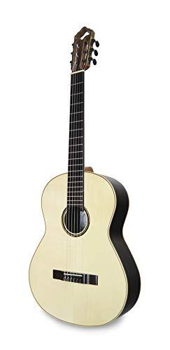 APC Instruments Luthier Gold Konzert Gitarre