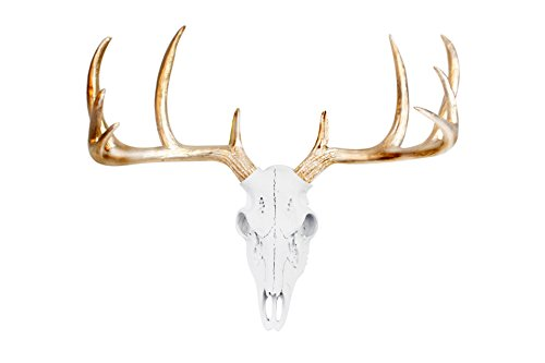 WALL CHARMERS Mini White + Gold Antler Faux Deer Skull - 16' Faux Taxidermy Animal Head Wall Decor - Handmade Farmhouse Decor