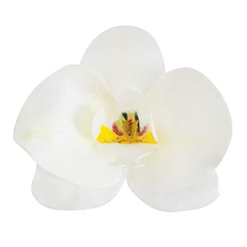 DEKORA- Conf. 10 Orchidee in Cialda per Torte, Colore Bianco, 126067