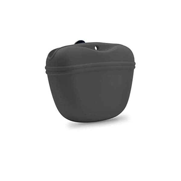 AUDWUD- Silicone Dog Treat Pouch – Clip on Portable Training Container ¨C Convenient Magnetic Buckle Closing and Waist Clip – BPA Free