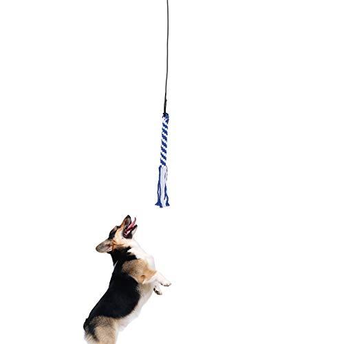 UEETEK Interaktive Hundespielzeug Angel Kauspielzeug Spielangel Stock mit Seil Hundeangel Pole Haustier Teaser Größe S (schwarz)