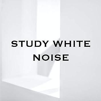 Study White Noise