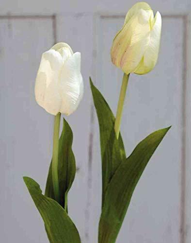 artplants.de Kunsttulpe Larissa, Creme-grün, 55cm - Textilblume/Kunststoff Tulpe - 2