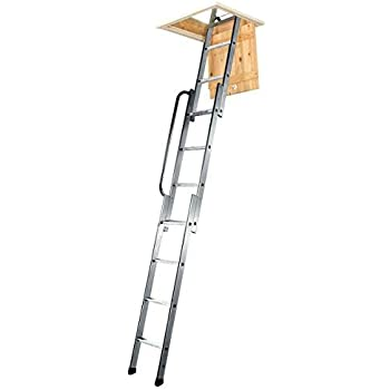 Youngman 313340 - Escalera para áticos (tamaño: 2.3-3 Metres ...