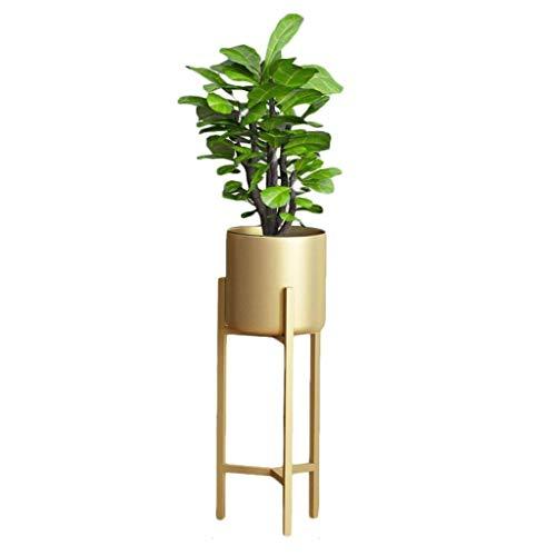 JN bloemenstandaard Bloemenstandaard met hoge metalen standaard tuinvitrine voor planten Bloempotten Houder Rack Planter Ondersteunt voor tuin Patio Balkon Woonkamer Office Decor in goud Indoor bloemenstandaard