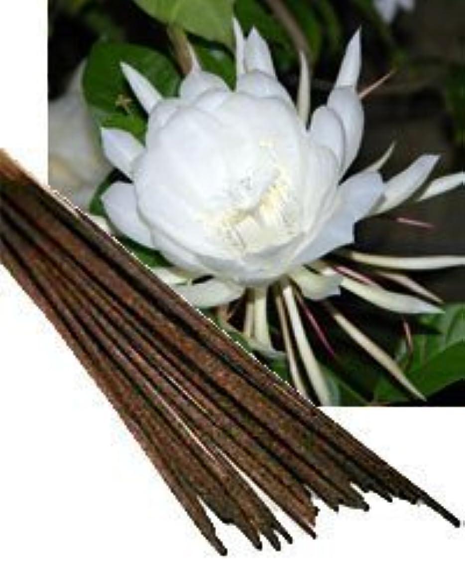 成長再編成するフックNight Queen Incense (Agarbatti) - (100 Gram Pack)