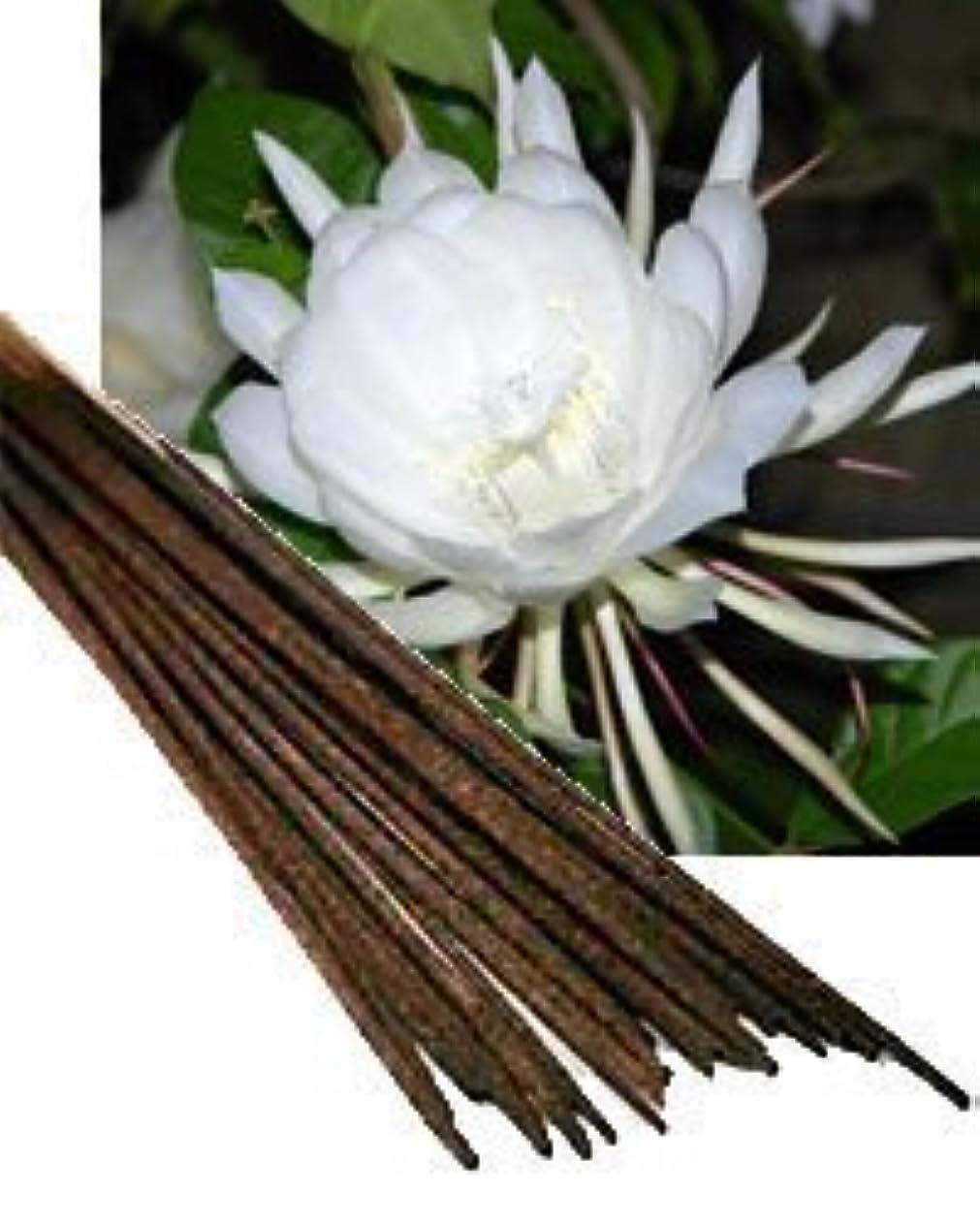 些細抑制する冊子Night Queen Incense (Agarbatti) - (100 Gram Pack)