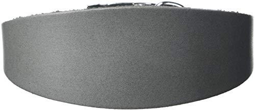 BBD Pet Products Grey Hound - Collar económico, Talla única, 3/4 x 14 a 16 Pulgadas, Color Gris