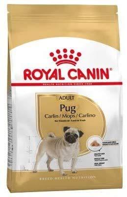 Canin Royal Pug Adult 3kg Rasspecifieke Droogvoer 10 maanden oude speciale brok gemakkelijk te kauwen en bevat vis & borage olie ondersteuning huid natuurlijke barrière met L.I.P. eiwitten