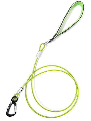 Mighty Paw Chew Proof Dog Leash - Six Foot Metal Cable Lead, Non Chewable Braided Cord with Padded Handle. Chew Resistant, Great for Large Dogs and Teething Puppies (Green)