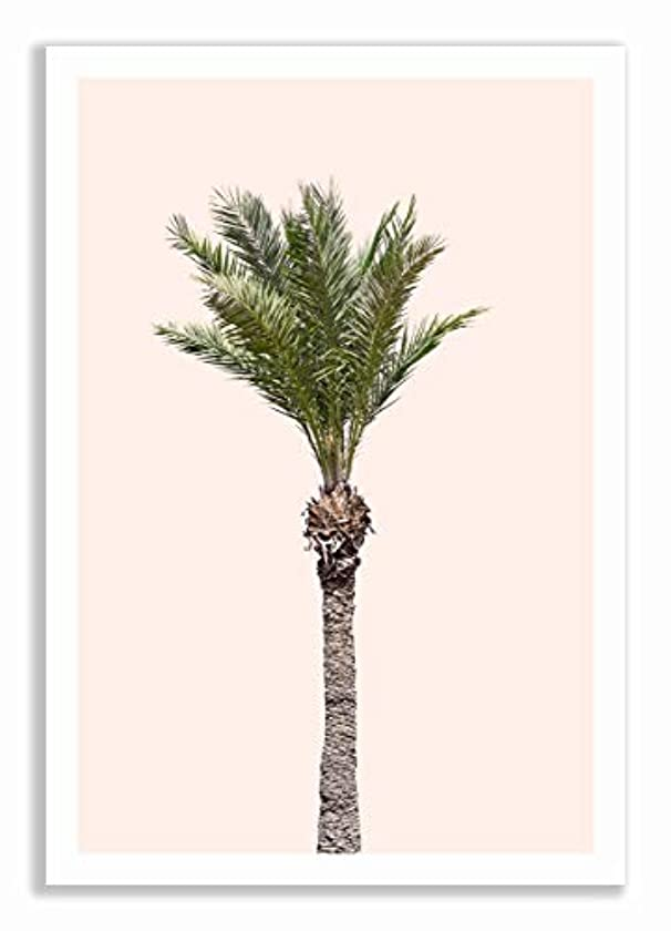 Palm Tree on Pink Background with White Lacquer Wooden Frame and Mount, Multicolored, 40x60
