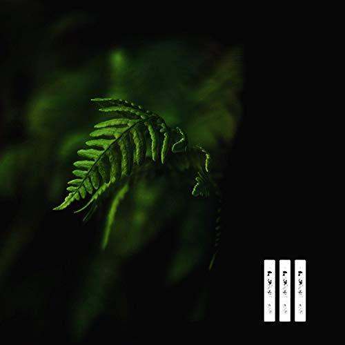 Bonsai (feat. Otto Osean)
