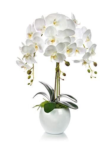 Künstliche Orchideen Kunstblumen im Übertopf aus Keramik | Gesamthöhe: 60cm | EU Handarbeit | Farbe: Weiß