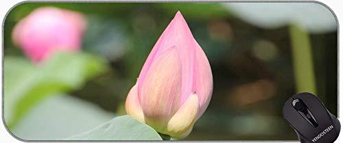 Planta Flor Lotus Flower Extra Grande Gaming Mouse Pad, Lotus Laptop Ordenador portátil Teclado Teclado Mousepad