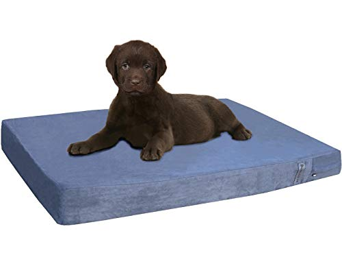 5 Top Rated Orthopedic Dog Beds - Dogbed4less Memory Foam Dog Bed
