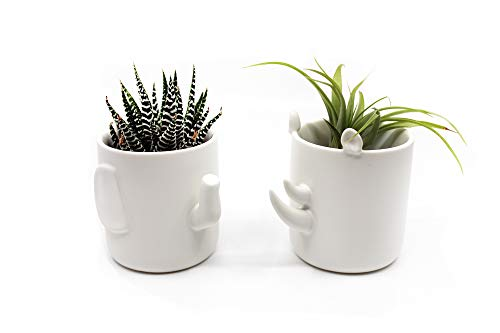 2 PC Wander POTS by Creature Cups Pack $10.20 (32% Off)