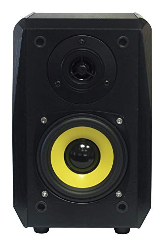 Dynavox TG-1000B Regal-Lautsprecher, kompakte 2 Wege-Box mit Abnehmbarer Abdeckung, Bassreflex-Öffnung, Paar, Schwarz