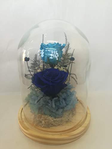 Rosas eternas Azul Gratis TU ENVÍO. Cúpula Bella y Bestia 25 cm de Altura. Rosas preservadas Naturales Azul con Flores secas, Hortensia preservada y Musgo liofilizado. Fabricada en España