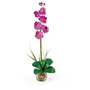Nearly Natural 1104-OR Single Phalaenopsis Liquid Illusion Silk Flower Arrangement, Orchid