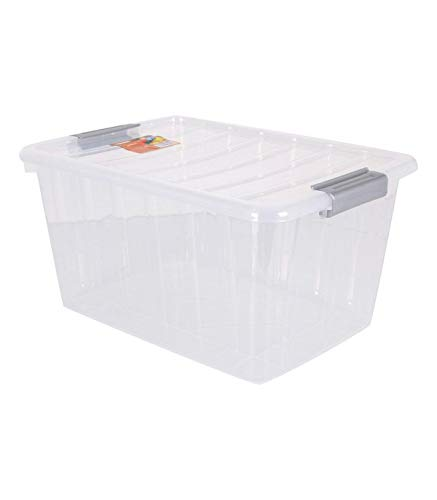 BigBuy Home Caja De Almacenaje con Tapa Thais 30 L Transparente