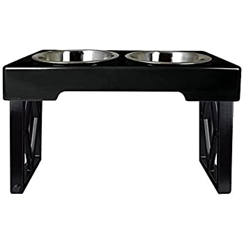elevated dog food bowl